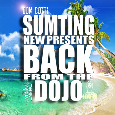 CottiSTN, Don Cotti, Back From The Dojo E Tape, Jamaica, UK, Dubstep, 13thStreetPromotions,