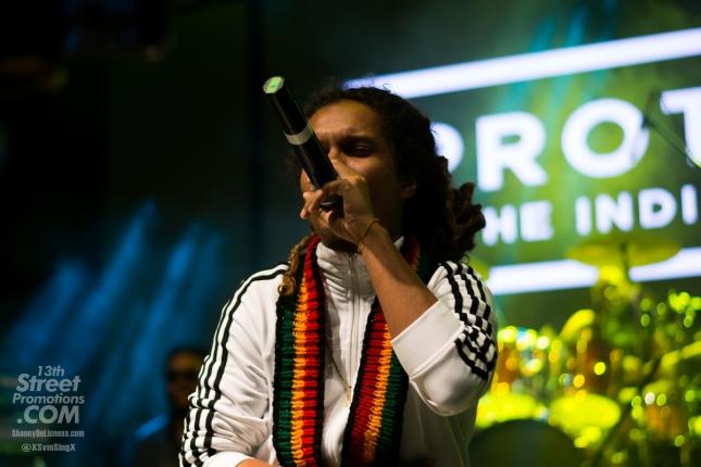 JAmaica, Reggae, Blog, 13thStreetPromotions, 13thStreetPromo, Protoje, For The Culture, Sevana, Dre Island, Jesse Royal, Blvk H3ro, Wayne J, The Royal Blu, Lila Ike, 5StarSOL Hope Gardens, Kingston, Deejay,