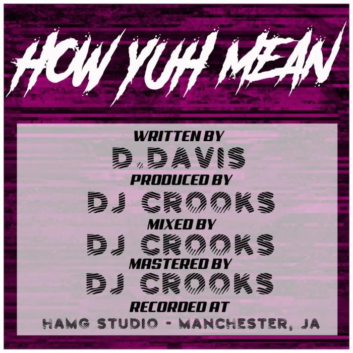 DaSupreme, Jamaica, Reggae, Dancehall, Blog, 13thStreetPromotions, 13thStreetPromo, Smoke, Marijuana, Weed, Ganja, Steam, How Yuh Mean, Music, Manchester, Mandeville, DJ Crooks, LA, Ganja,