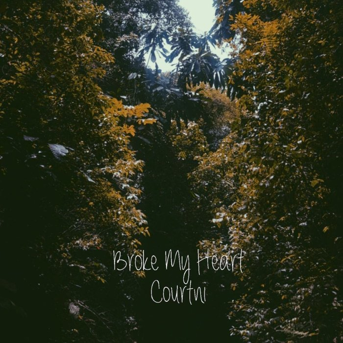 Jamaica, Di Vibe, Music, Courtni, SingCourtniSing, Blog, 13thStreetPromotions, 13thStreetPromo, Broke My Heart, Relationships, Heart, Soundcloud, R&B,