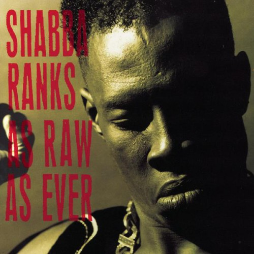 Jamaica, Reggae, Dancehall, Music, Blog, 13thStreetPromotions, 13thStreetPromo, Reggae Grammy, Grammy, The Grammys, Grammy Nominees, Caribbean, For The Culture, Shabba Ranks, As Raw As Ever,