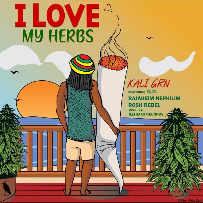 Jamaica, Dancehall, Music, Blog, 13thStreetPromotions, 13thStreetPromo, Kali Grn, Original Kali, KaliGrnMusic, O.D., Rosh Rebel, Rajaheim Nephilim, Herb, Ganja, Weed, Marijuana, Caribbean, Soundcloud, Illtrax Records,