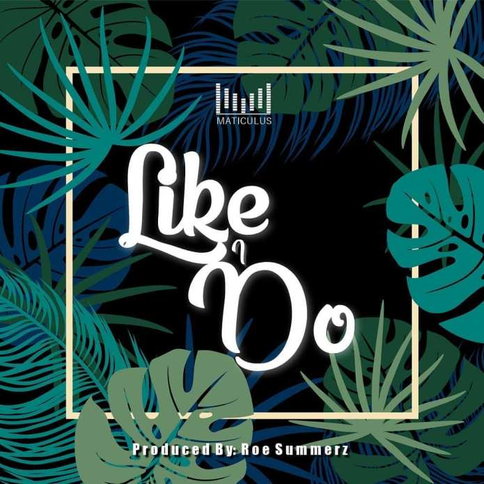 Jamaica, Dancehall, Reggae, Music, Blog, 13thStreetPromotions, 13thStreetPromo, Like I Do, Maticulus Auburn, Roe Summerz, Caribbean, Singer, Entertainment,