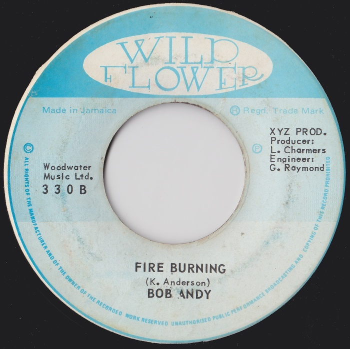 Bob Andy - Fire Burning Jamaica Reggae Music Blog Oldies Sunday Wild Flower Marcia Griffiths Caribbean Old School Music 1974
